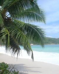Seychelle-szigetek nyaralás: egzotikus élmény az Indiai-óceánon